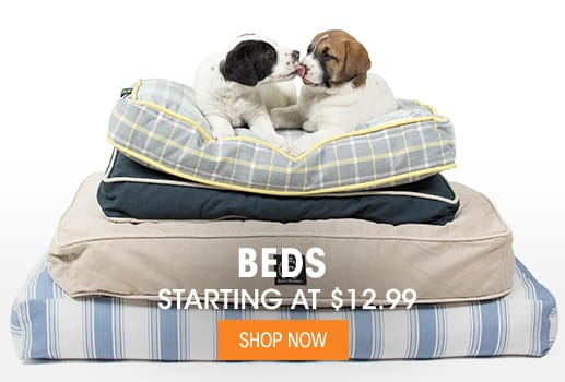 Beds - Starting at $12.99